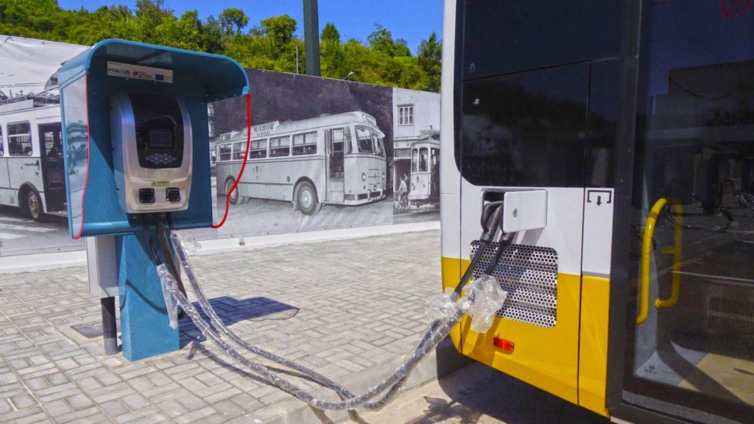 Câmara compra mais cinco autocarros 100% elétricos para os SMTUC