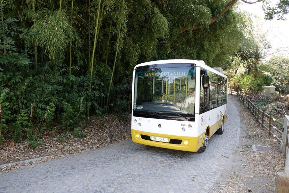 Oferta de transportes públicos adaptada aos novos horários das escolas e da UC