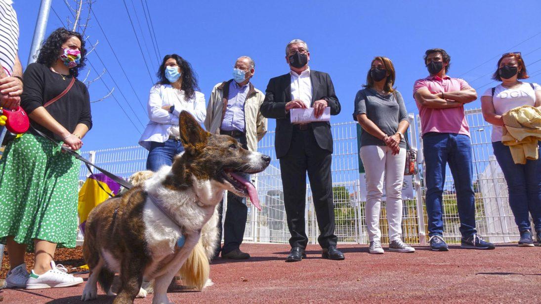Coimbra já tem um Parque Canino Municipal